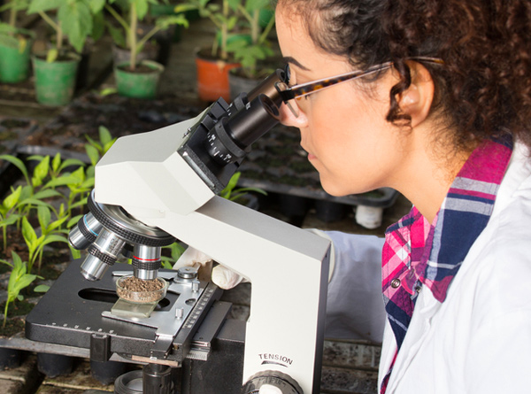 Careers with STEM: Quizzes