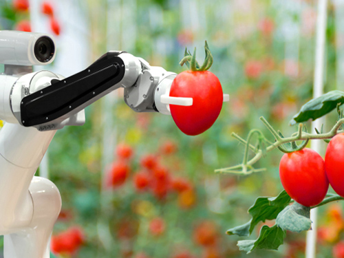 The many applications for robots in farming
